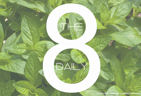 DailyEight18